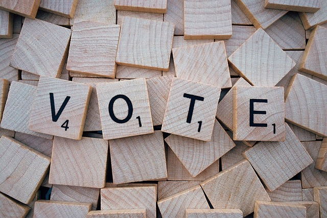 voting south africa
